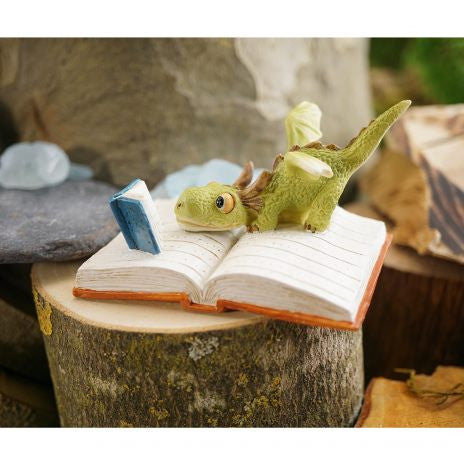 Mini dragon reading