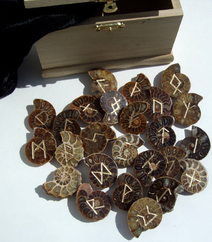 Ammonites Fossil Runes Set - Cast a Stone