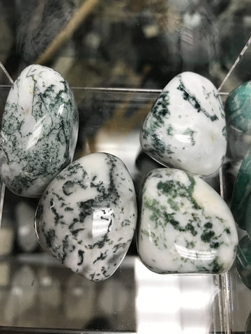 Tree Agate Tumbled Single Gemstone - Cast a Stone