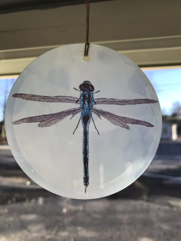 Glass X-Ray Ornament Blue Dragonfly