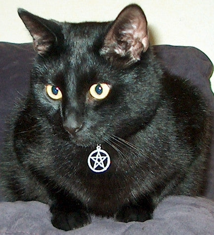 Witch's Familiar Cat Collar with Sterling Silver Charm - Pentacle or Triple Knot - Cast a Stone