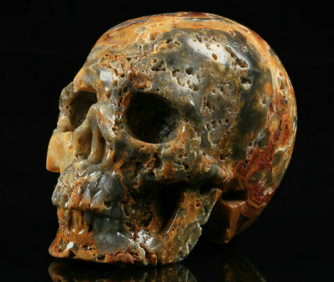 Crazy Lace Agate Natural Crystal Skull