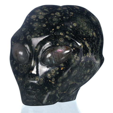 Kambaba Jasper Natural Crystal Alien Skull - Star Being -