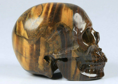 Tiger Eye Natural Crystal Skull