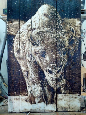 Charred Wood Buffalo Art