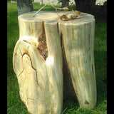 Stump Table - log end table, tree stump, stump stool, log table