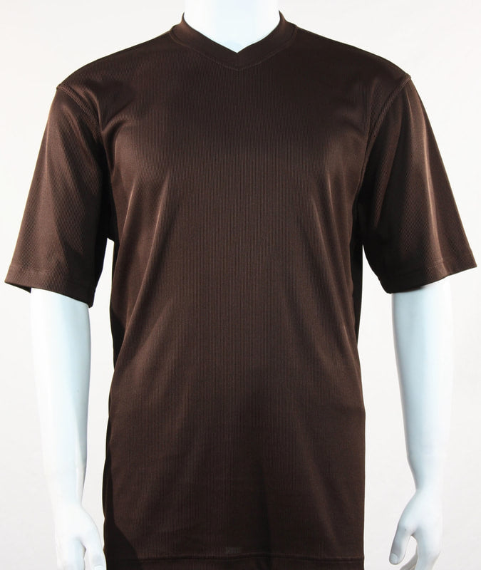 Bassiri S/S V-Neck T-Shirt (Brown)