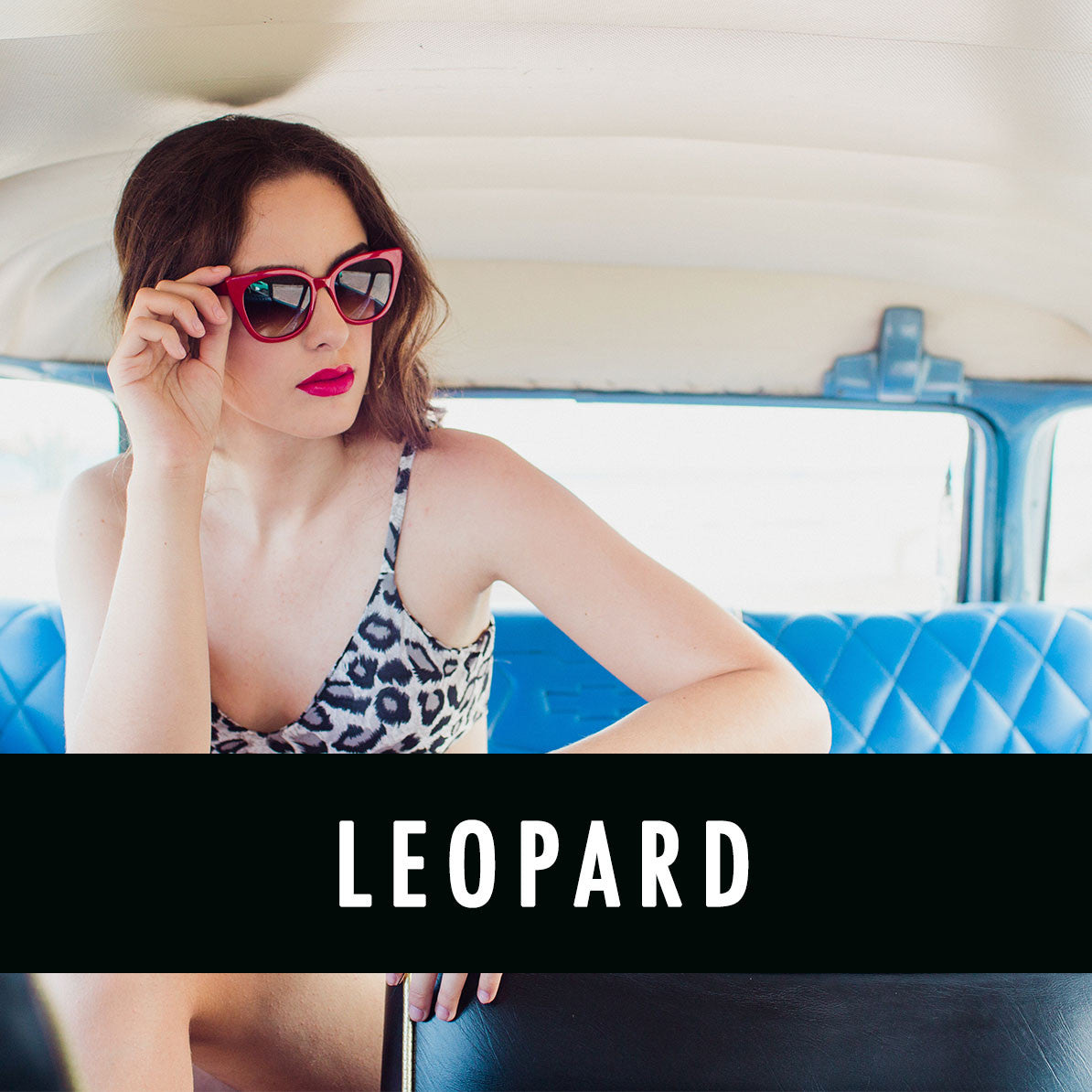 STYLE GROUP: LEOPARD