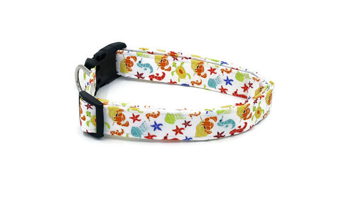 Ditzy Sea Creatures on White Dog Collar Starfish, Turtle, Seahorse, Hermit Crab
