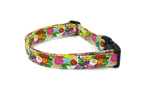 Funky Floral Spring Painting Dog Collar Flowers