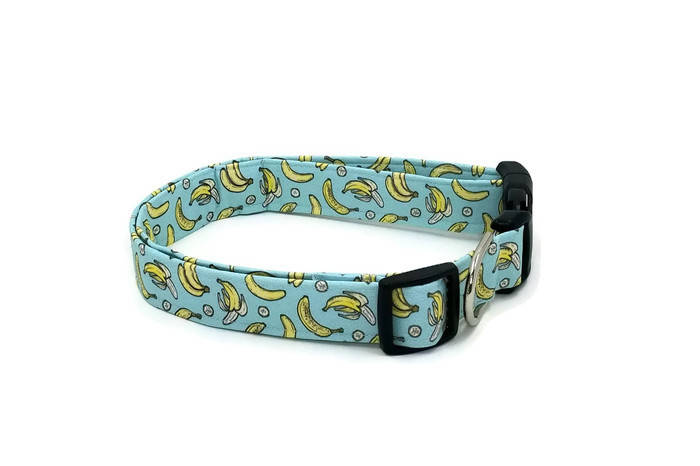 Bananas whole, peeled, sliced and bunched on Mint Green Dog Collar