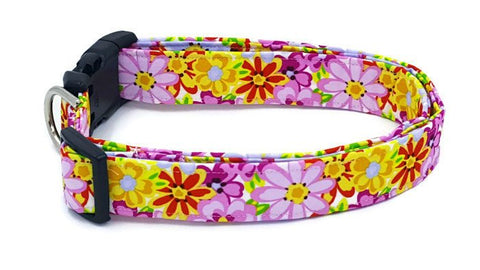 April Showers Bring May Flowers Yellow Purple Pink Green Red Blue Floral Dog Collar