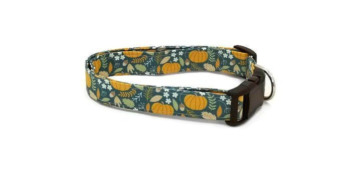 All Things Fall Pumpkins, Leaves, Acorns on a Jade Green Dog Collar