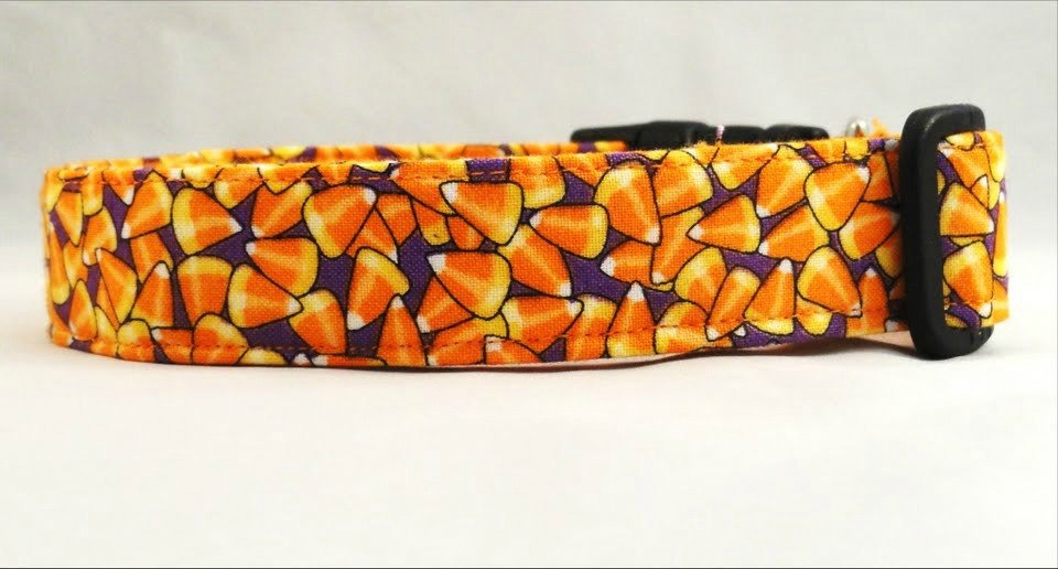 Awesome Candy Corn on Purple Dog Collar