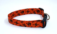 A Pirate's Life for Me Black Skulls and Crossbones on Burnt Orange Pirate Dog Collar