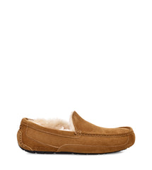 UGG Australia Men's Ascot in Chestnut Suede