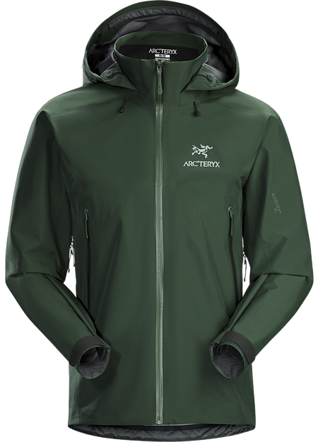 Arc'teryx Men's Beta AR Jacket in Conifer