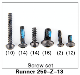 Walkera Runner 250 Screw Set - Carolina Dronz - 1