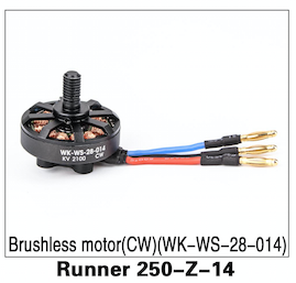 Walkera Runner 250 Brushless Motor (CW) WK-WS-28-014 - Carolina Dronz - 1