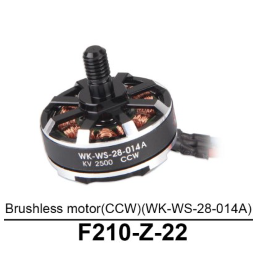 Walkera F210 Brushless Motor (CCW) - Carolina Dronz