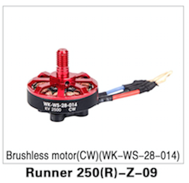 Walkera Runner 250 Advanced Brushless Motor (CW) - Carolina Dronz - 1