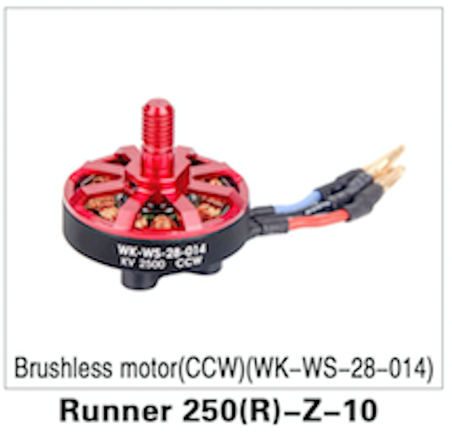 Walkera Runner 250 Advanced Brushless Motor (CCW) - Carolina Dronz - 1