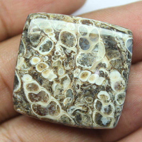 54ct, 29x29x7mm, Turtella Jasper 100% Natural Loose Cabochon Gemstone - Jewels Exports
