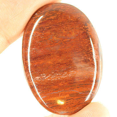 62.5ct Natural Brown Petrified Wood Loose Gemstone Oval Cabochon - Jewels Exports
