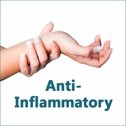 anti-inflammatory herbal products