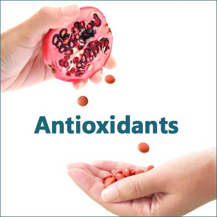 antioxidant protect free radical herbs and supplments icon