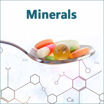 natural minerals and trace elements support bone health