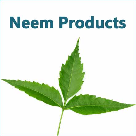 neem ayurvedic products