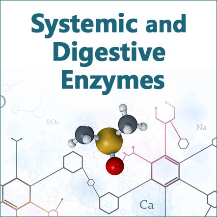 systemic and digestive enzyme supplements