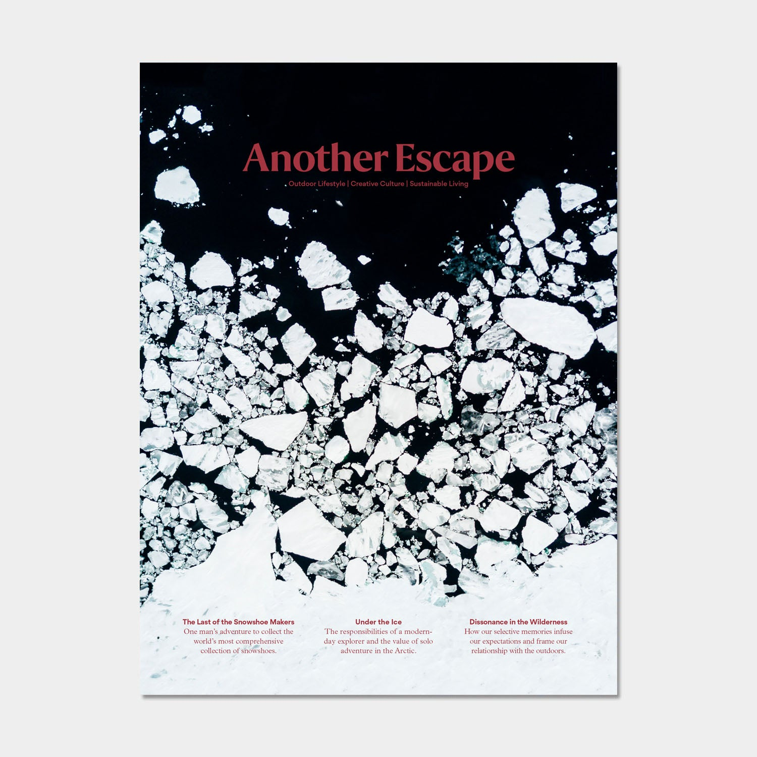 Another Escape Magazine Volume 11 - The Frozen Volume