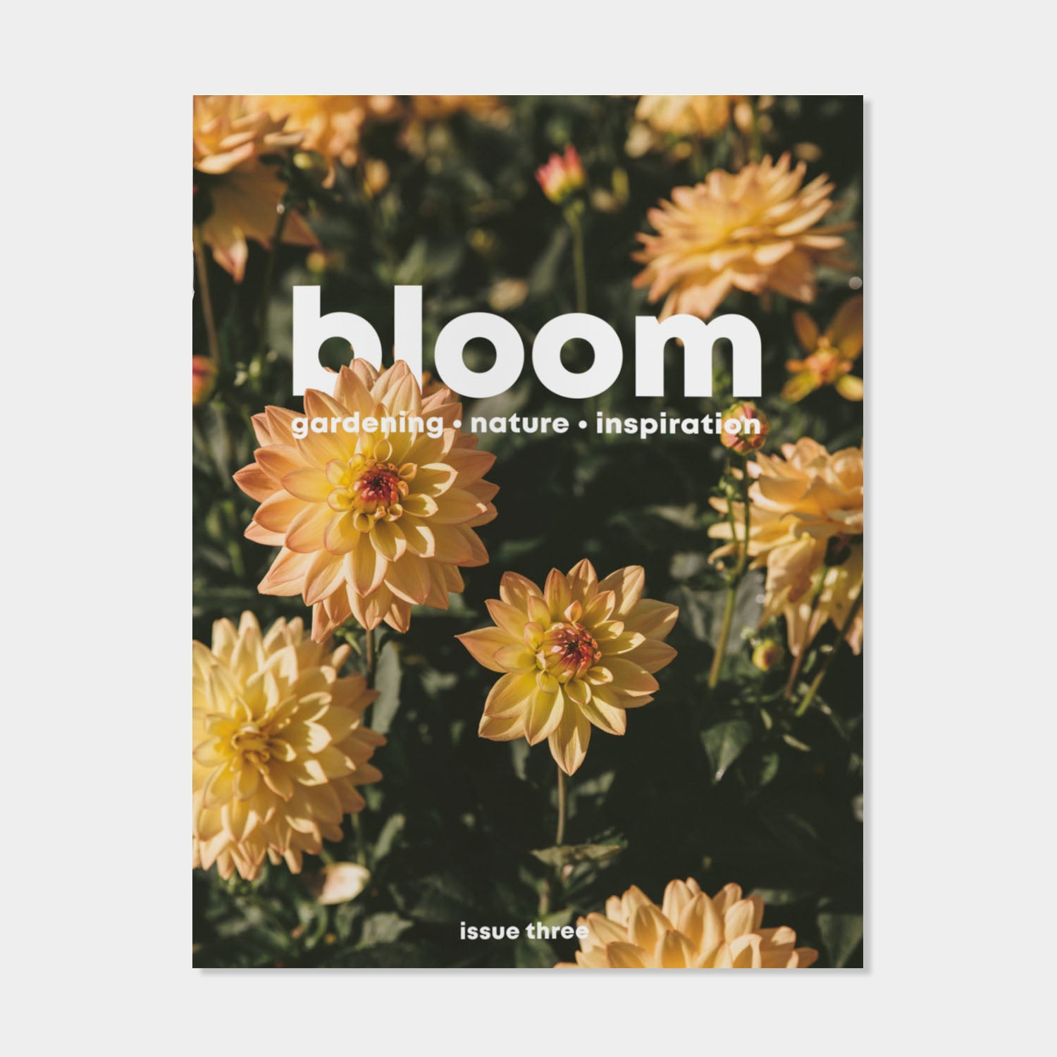 Bloom Magazine - Issue Three