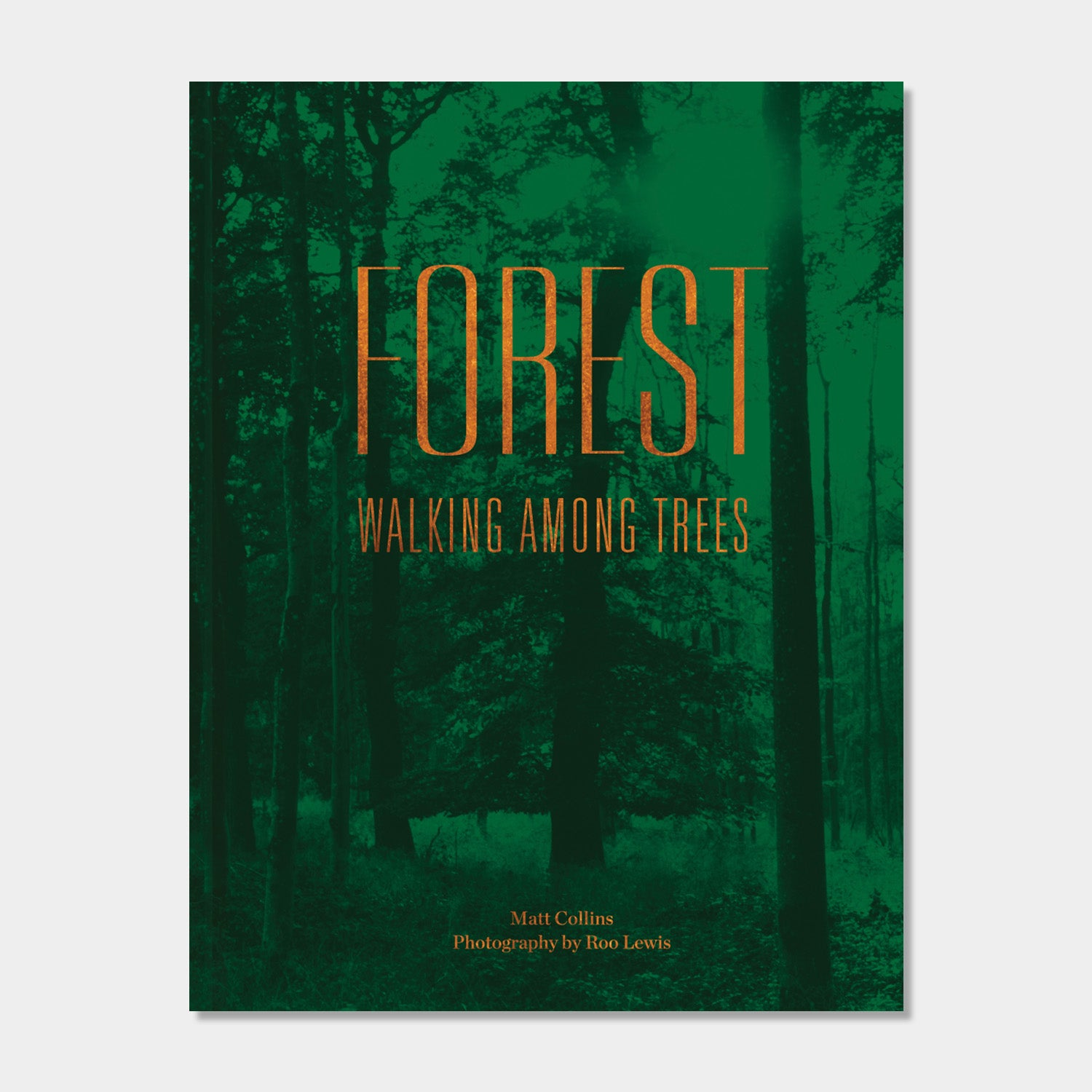 Forest - Walking Among Trees