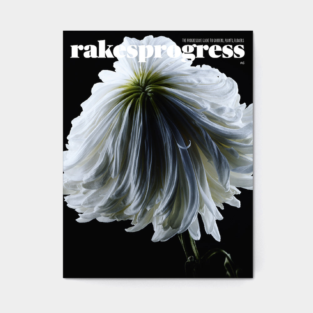 Rakesprogress Magazine - Issue 6