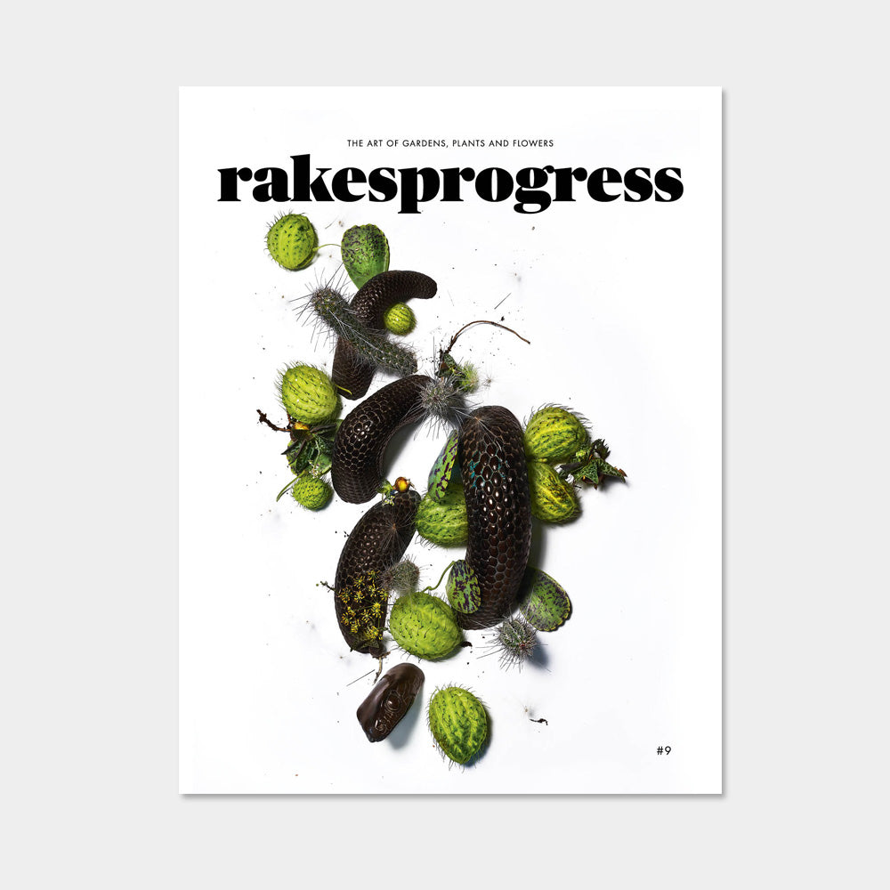 Rakesprogress Magazine - Issue 9