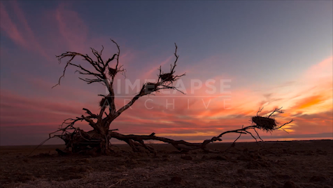 Time-lapse Big Sur: Flat Land Pink Sky Sunset