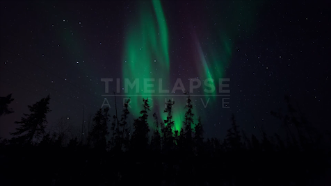 Time-lapse Northwest Territories: Aurora Treeline