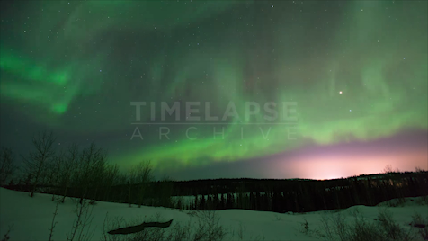 Time-lapse Northwest Territories: Aurora Purple Sky