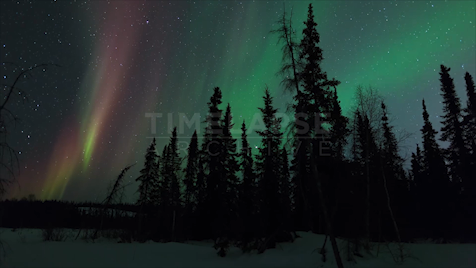 Northwest Territories: Aurora Purple Rays