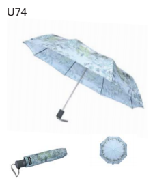 Hawkins Ladies Landscape Umbrella U74
