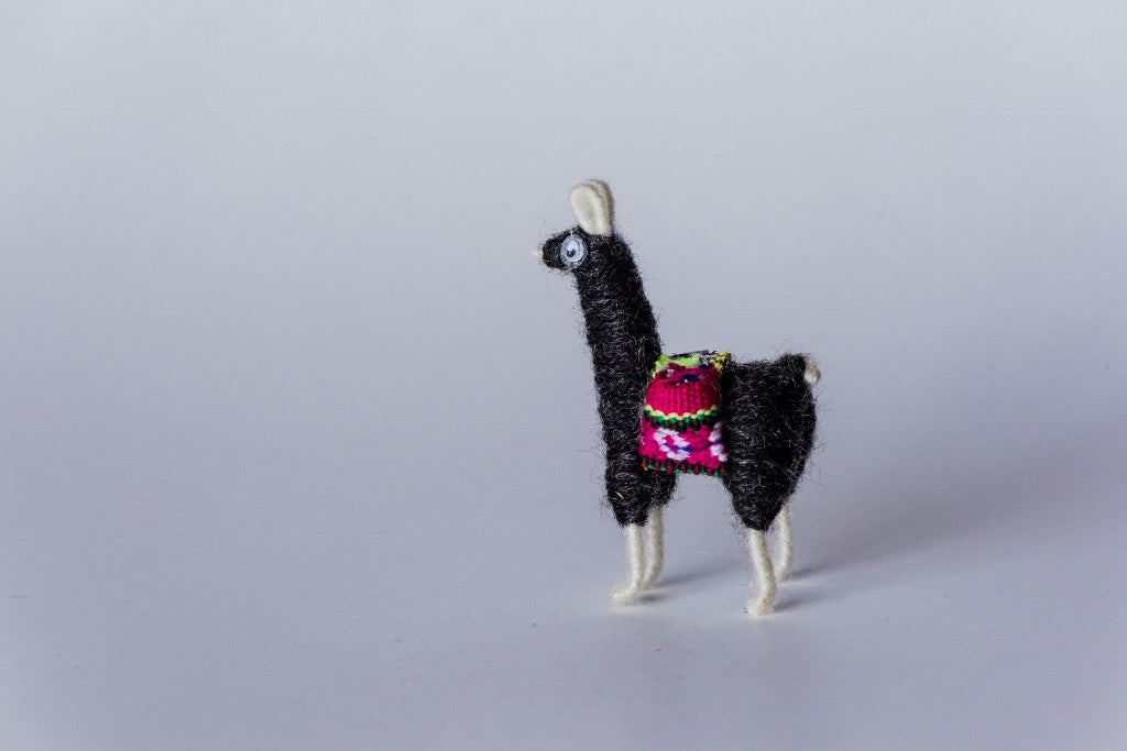 Pacas magnet (Proceeds go to Hope for Christmas)