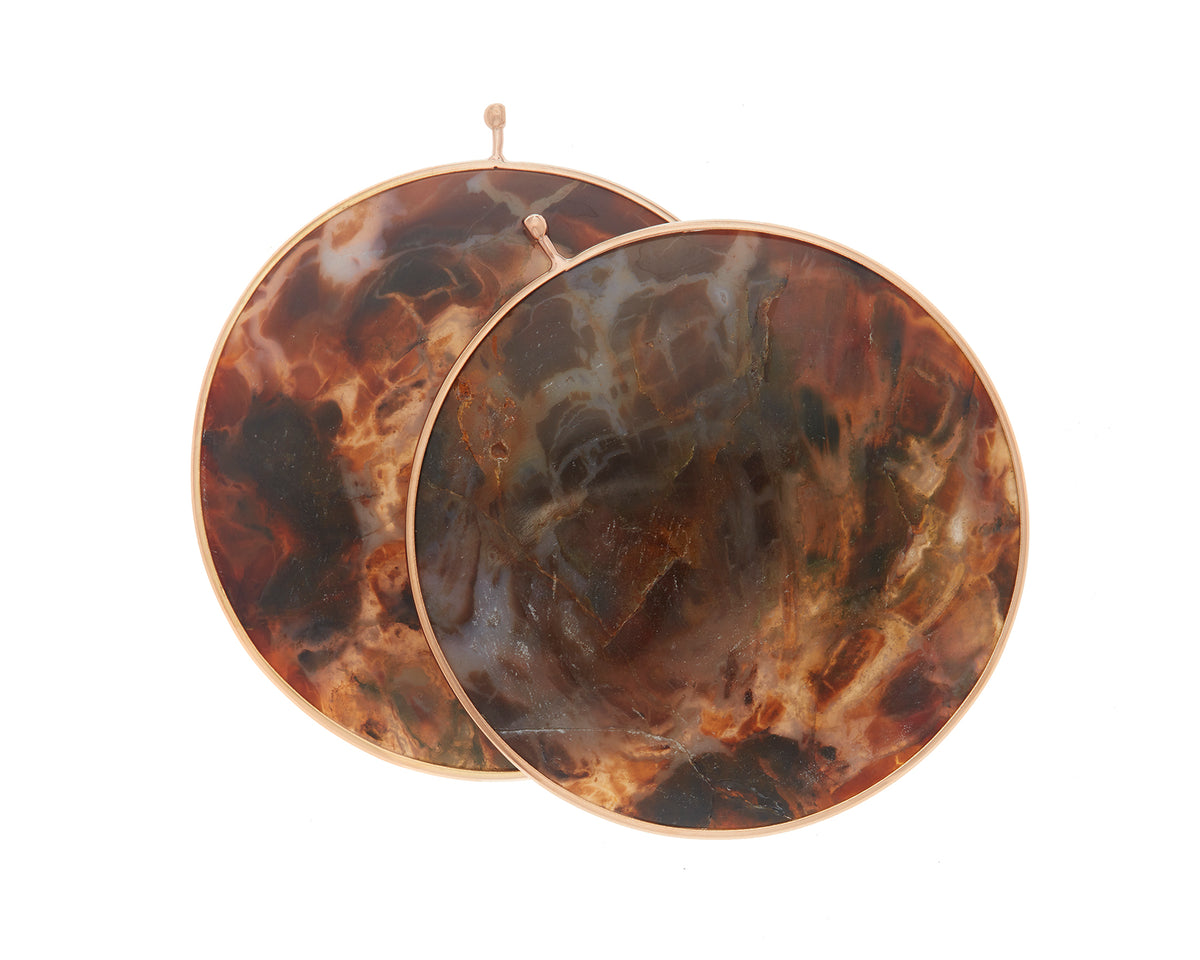 Petrified Wood Disc Pair