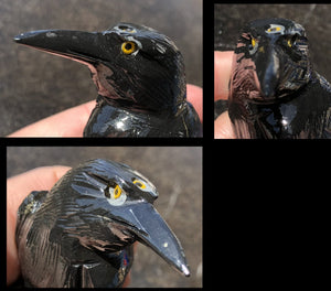 ~NEW!~ Lg. Onyx THREE EYED RAVEN Carving with Yellow Eyes!
