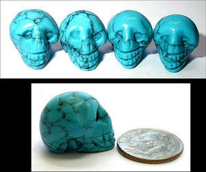 TURQUOISE HOWLITE Pocket Sized Crystal Skull - Creativity! Communication!