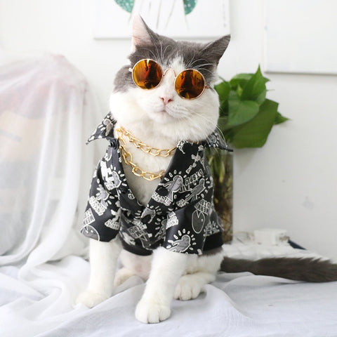 Cat Glasses Pet Sunglasses Dog Eye-wear Little Dog Glasses Photos Props Dog Cat Accessories Pet Supplies For Small Dogs Products