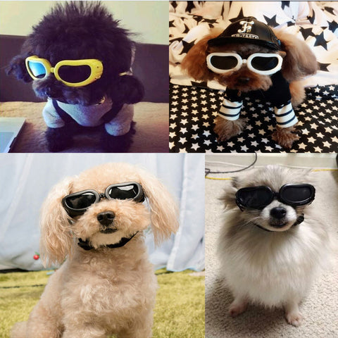 Adjustable Pet Dog Sunglasses Small Pet Puppy Cat Fashion Goggles Waterproof Windproof Eye Wear Protection UV Sun Glasses