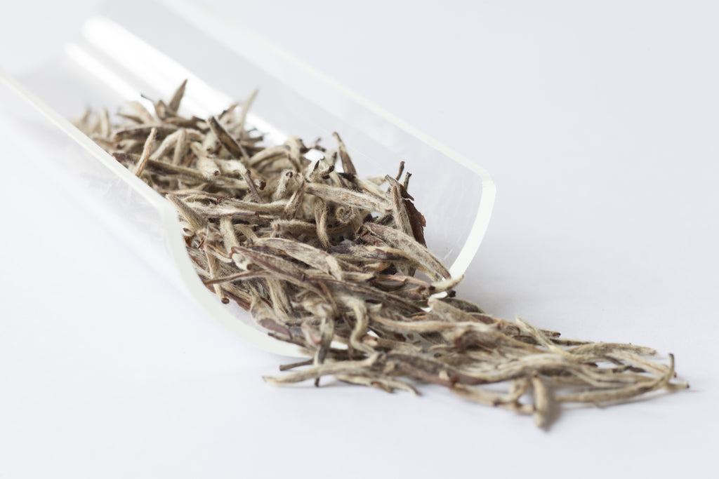 Aged Silver Needles ( Baihao Yinzhen) 2009